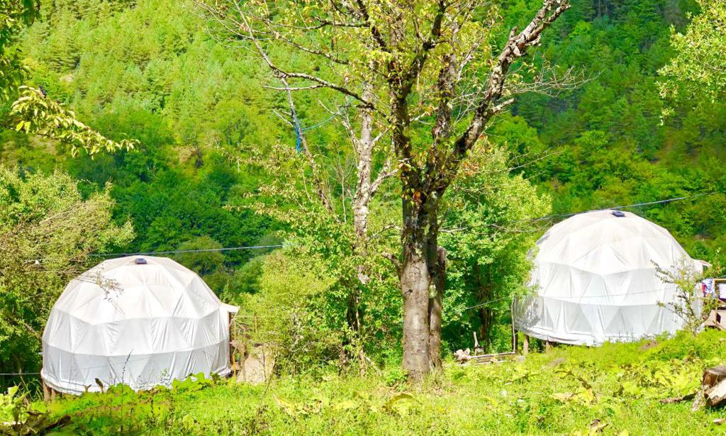 酒店帐篷与野外帐篷有什么区别